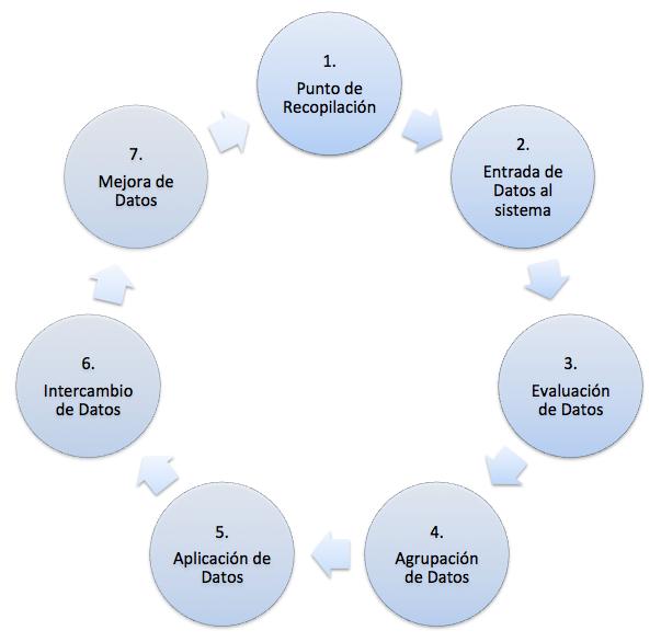 proces-marketing-de-base-de-datos